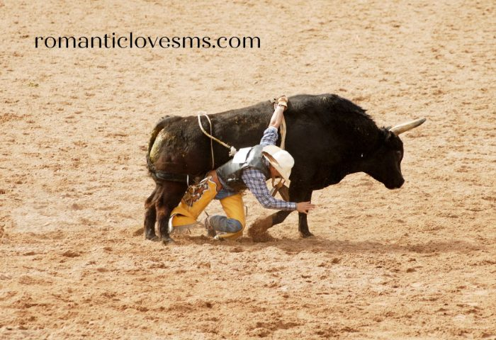 Bull Riding Quotes and Captions